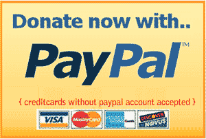 paypal_donate_now_button
